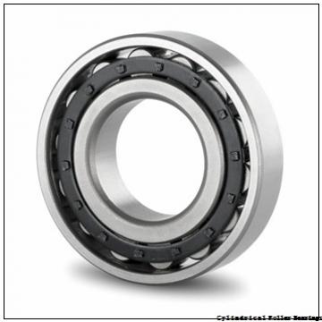 3.346 Inch | 85 Millimeter x 7.087 Inch | 180 Millimeter x 2.362 Inch | 60 Millimeter  NSK NU2317W  Cylindrical Roller Bearings