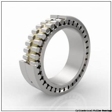 2.953 Inch | 75 Millimeter x 6.299 Inch | 160 Millimeter x 2.165 Inch | 55 Millimeter  NSK NU2315W  Cylindrical Roller Bearings