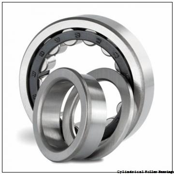 3.15 Inch | 80 Millimeter x 4.331 Inch | 110 Millimeter x 2.244 Inch | 57 Millimeter  INA SL12916 Cylindrical Roller Bearings