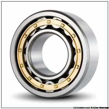 2.362 Inch | 60 Millimeter x 4.331 Inch | 110 Millimeter x 0.866 Inch | 22 Millimeter  NSK N212WC3  Cylindrical Roller Bearings